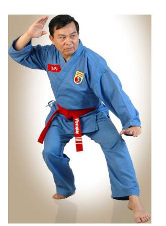 Maître Sen, 9e dang vovinam viet vo dao